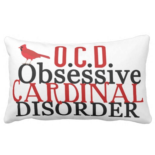 Funny Cardinal Pillows throw pillows
