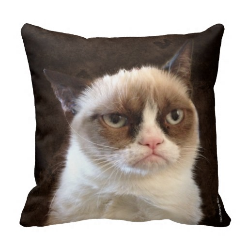 Grumpy Cat Brown Pillow throw pillows