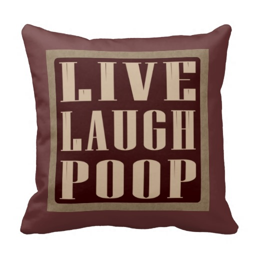 Live laugh poop funny pillow