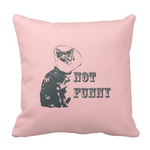 Not Funny Pillow throw pillows