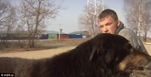 A Russian Smashes Through an Icy Lake to Rescue a Dog