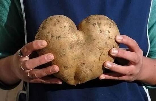 Potato Heart