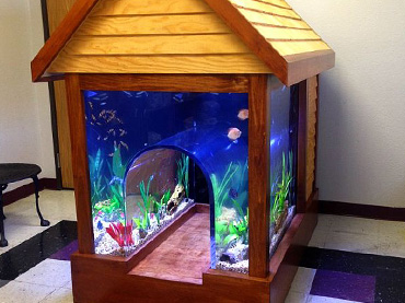 Give Your Home An Ocean Touch With These Aquascape Ideas