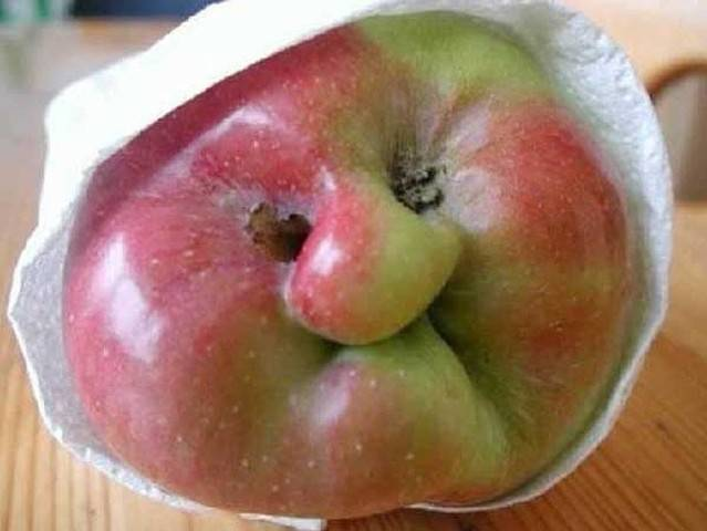 Weird Shaped Fruits 6