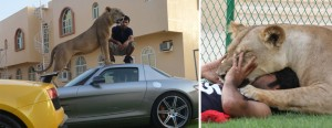 rich-guys-with-lions-of-instagram