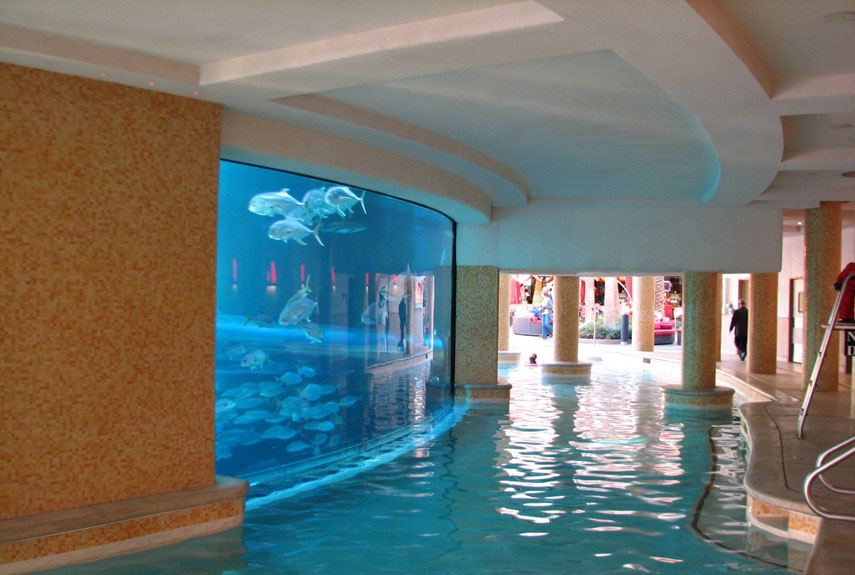 Swim in the world s most unusual pools wow amazing for Indoor swimming pools in las vegas