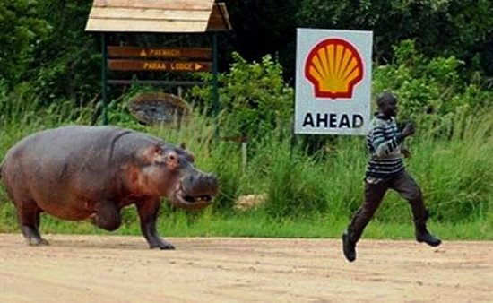 I don't think now is a good time to tell this man that hippos can run almost 20 miles per hour.