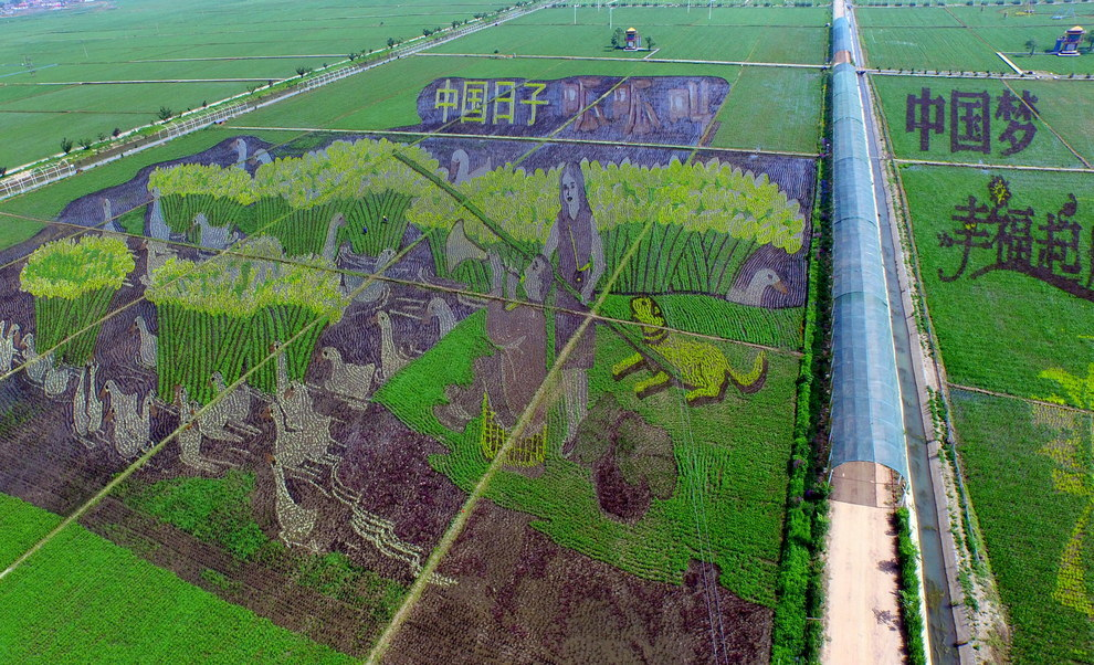 These aren't the result of aliens or ancient civilizations. Instead, they're the handiwork of Chinese farmers as part of a theme park that opened last year.