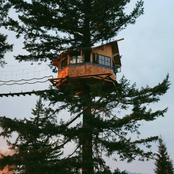 incredible tree houses treehouses 16 Live off the grid in a treehouse of your dreams (30 Photos)