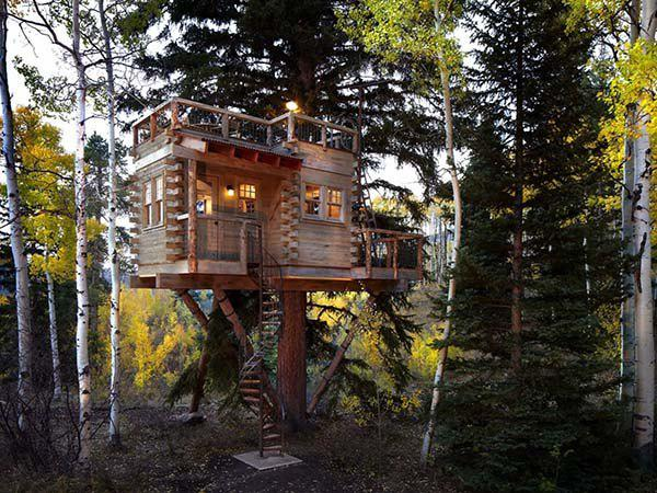 incredible tree houses treehouses 9 Live off the grid in a treehouse of your dreams (30 Photos)