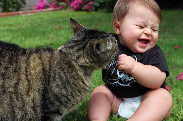 Baby Playing With Cat