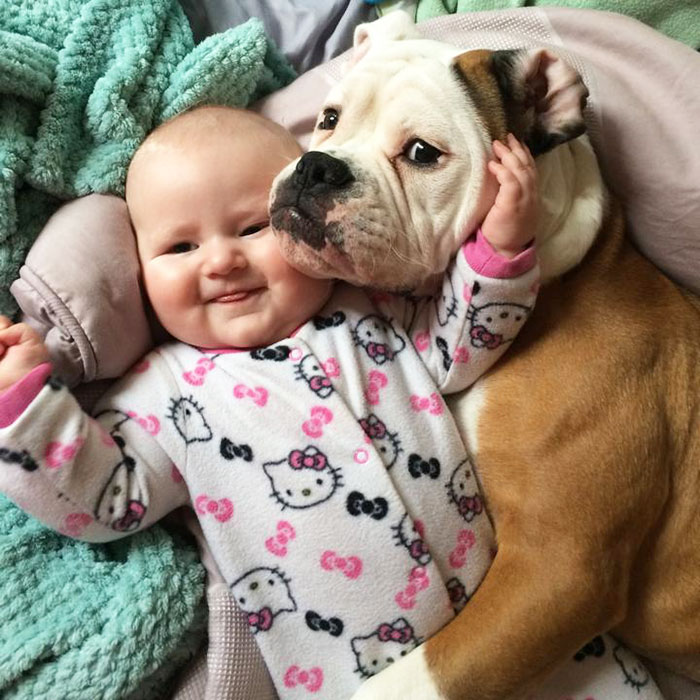 over 100 lovable photos that prove kids need for dogs wow amazing