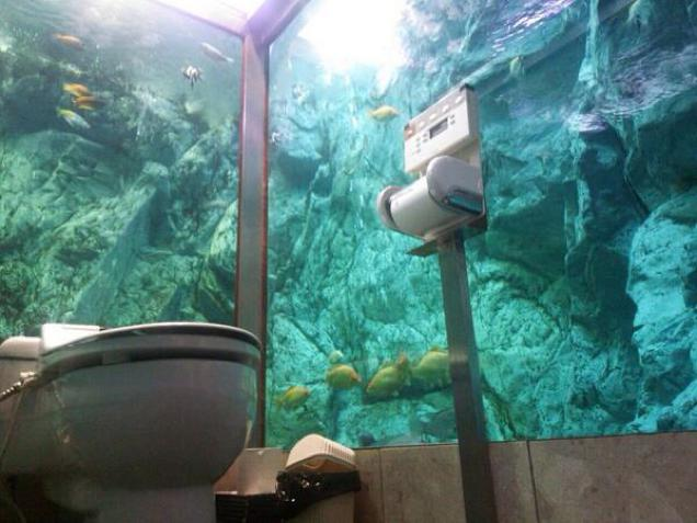 The Coolest Toilets In The World Wow Amazing