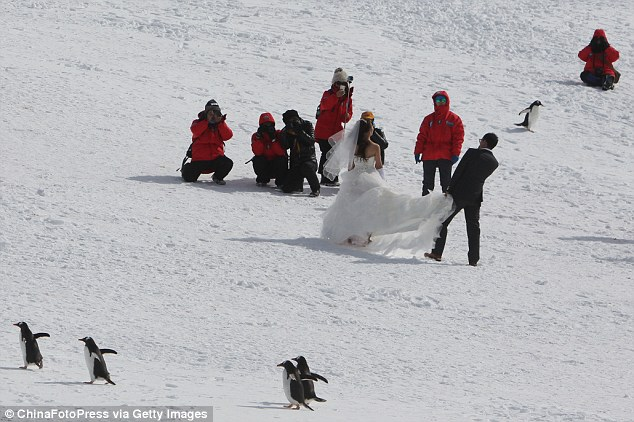 Walking down the icicle: While  friends and family went for padded jackets, the bride wore a strapless dress