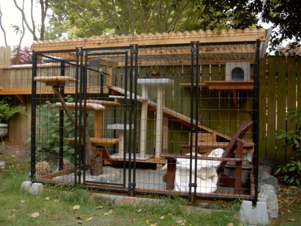 Elegant ... For Families Who Are Absolutely Cat Lovers. These So Called U201ccatiosu201d  Are Aplty Called So Because It Is A Combination Of Both A Patio And A  Enclosure.