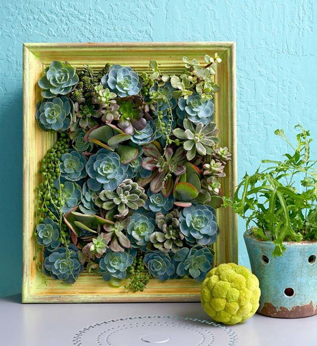 "...Or even <a href=""https://au.lifestyle.yahoo.com/better-homes-gardens/gardening/h/19697363/how-to-make-a-succulent-vertical-garden/"" target=""_blank"">THIS one</a>!"