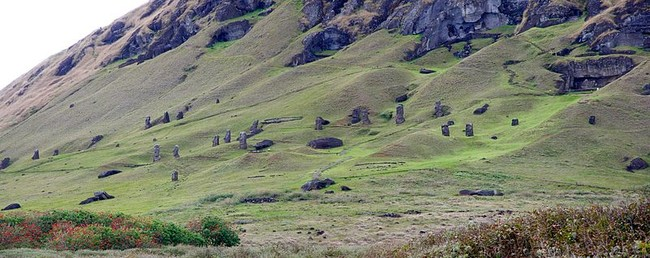 This field is studded with moai heads, which have been here for hundreds of years.
