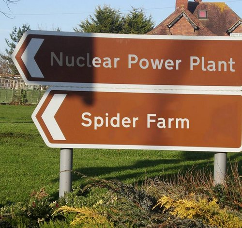 nuclear power plant next to spider farm