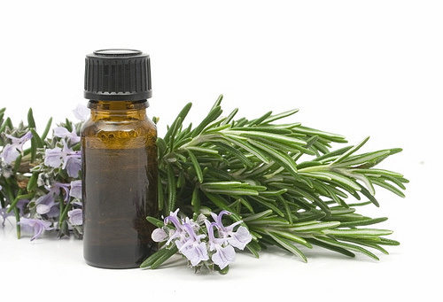Use citronella, rosemary, eucalyptus, cedar, lemongrass essential oils for a natural way to fight fleas and ticks instead of toxic chemicals.