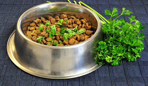 Sprinkle a little bit of fresh parsley into your dog's food to freshen their breath.