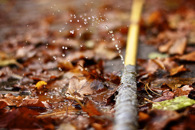 If your garden hose springs a leak find the hole, stick a toothpick into it, then snap it off.