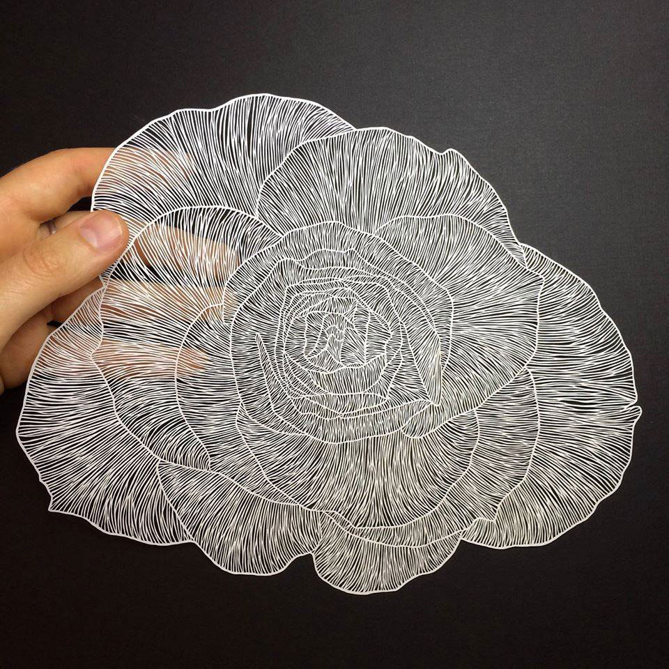paper art by maude white (13)