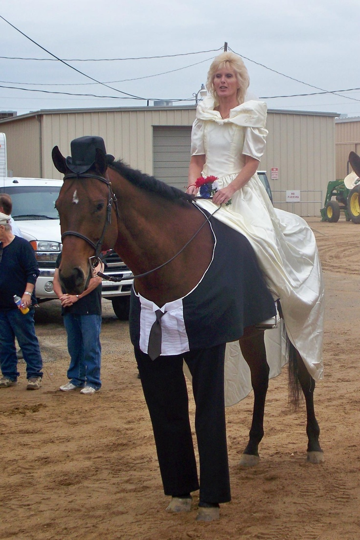 Bride u0026 Groom  sc 1 st  Wow Amazing & Horse Halloween Costumes are so Brilliantly Funny u2026You Might Want ...