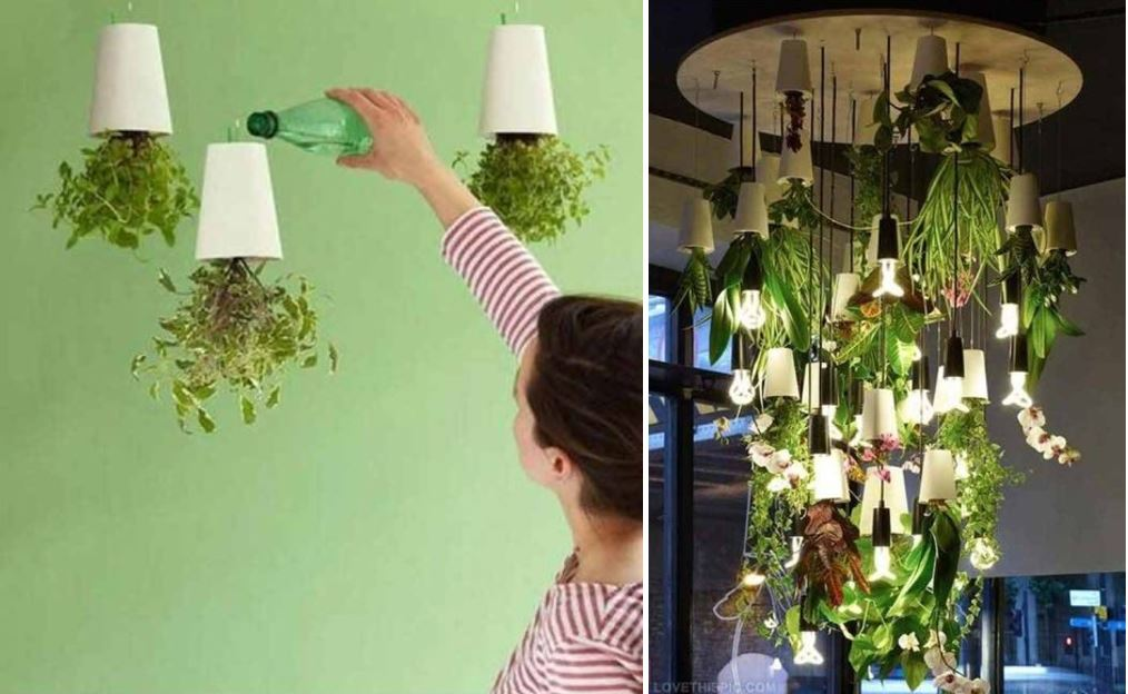 AD-Smart-Miniaturized-Indoor-Garden-Projects-26