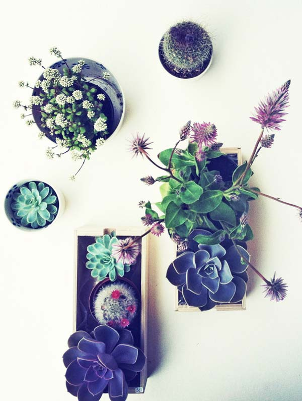AD-Smart-Miniaturized-Indoor-Garden-Projects-9
