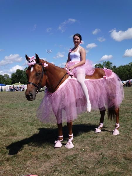 Horse Halloween Costume | Horse Halloween Costumes Are So Brilliantly Funny You Might Want