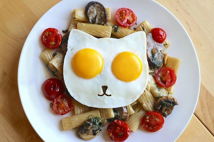 cat-shaped-egg-mold-sunny-side-breakfast-3