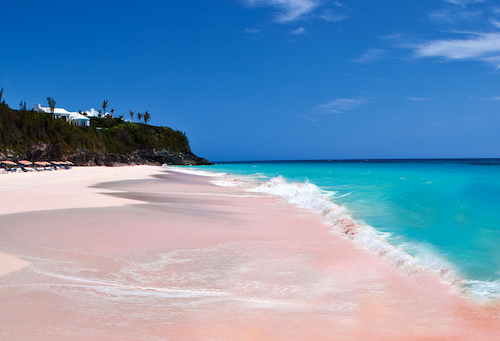 There Is A Beach With Pink Sand Seriously Wow Amazing