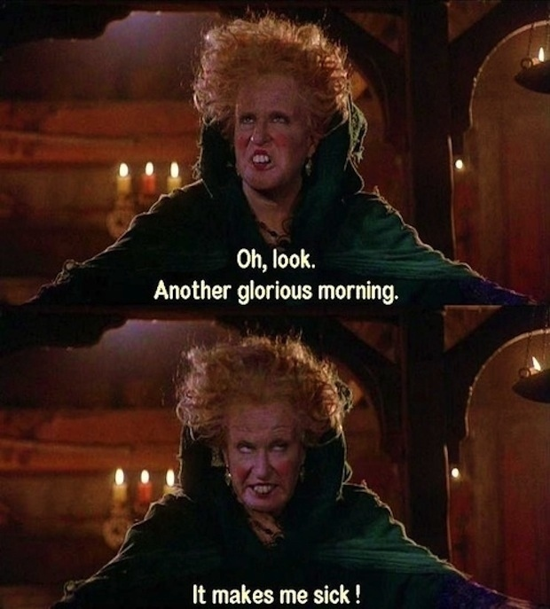 And, honestly, don't we all feel like Winifred every single morning?
