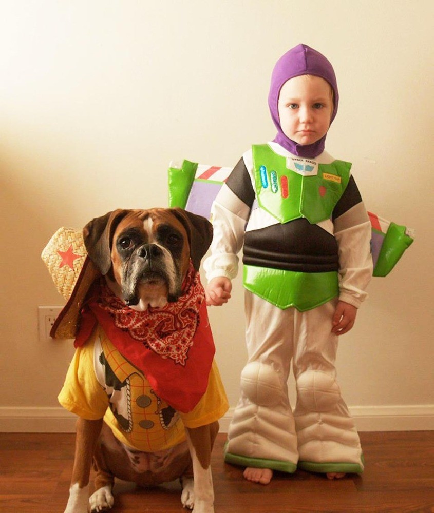 dogs-and-kids pair up in halloween costume duos …see the cute side