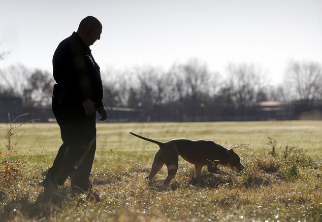 All dogs are different: 'The breed isn't important,' said Brad Croft, who trains dogs for law enforcement and the military and found Kiah in a Texas animal shelter after her previous owner was arrested for animal cruelty. 'It's what's inside of the dog that's important'