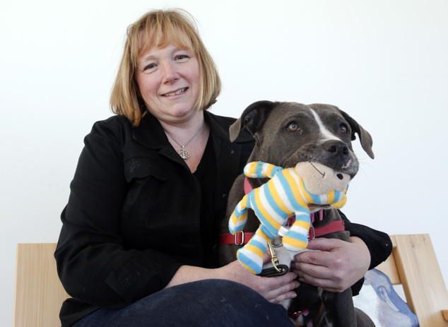 Bernice Clifford, Animal Farm's director of training, noted that the term 'pit bull' itself is misleading, since it is often applied to any dog with a muscular frame and block-shaped head. In this photo, Stacey Coleman, executive director of Animal Farm Foundation, poses with Josie at the SPCA in Hyde Park