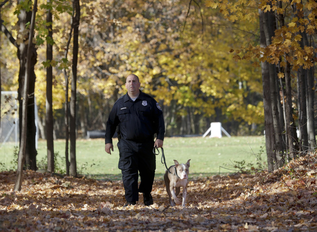Police aptitude:  There's also little connection between a dog's breed and their aptitude for police work, according to George Carlson, the Ulster County sheriff's deputy who trained Kiah in Stone Ridge, New York. He said a dog's drive, energy and eagerness to please are more important factors