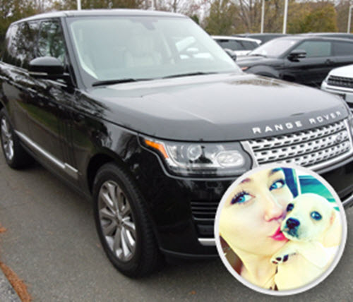 Range-Rover-for-Dogs