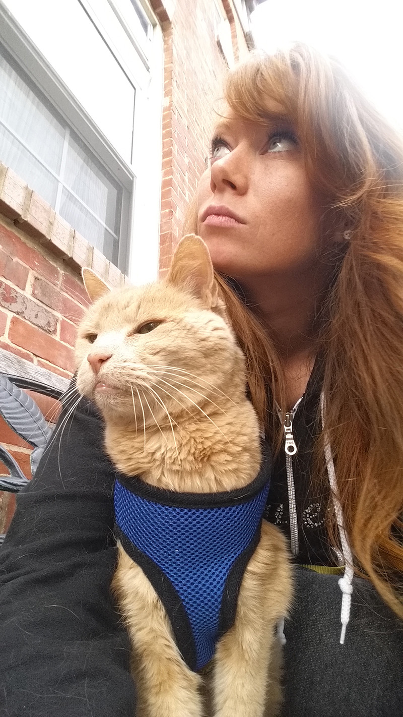 woman takes senior cat on bucket list adventures