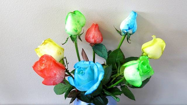 how to make vibrant rainbow roses