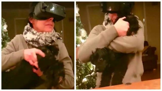 Mom Wearing VR Headset Accidentally Grabs Wrong End of the Dog